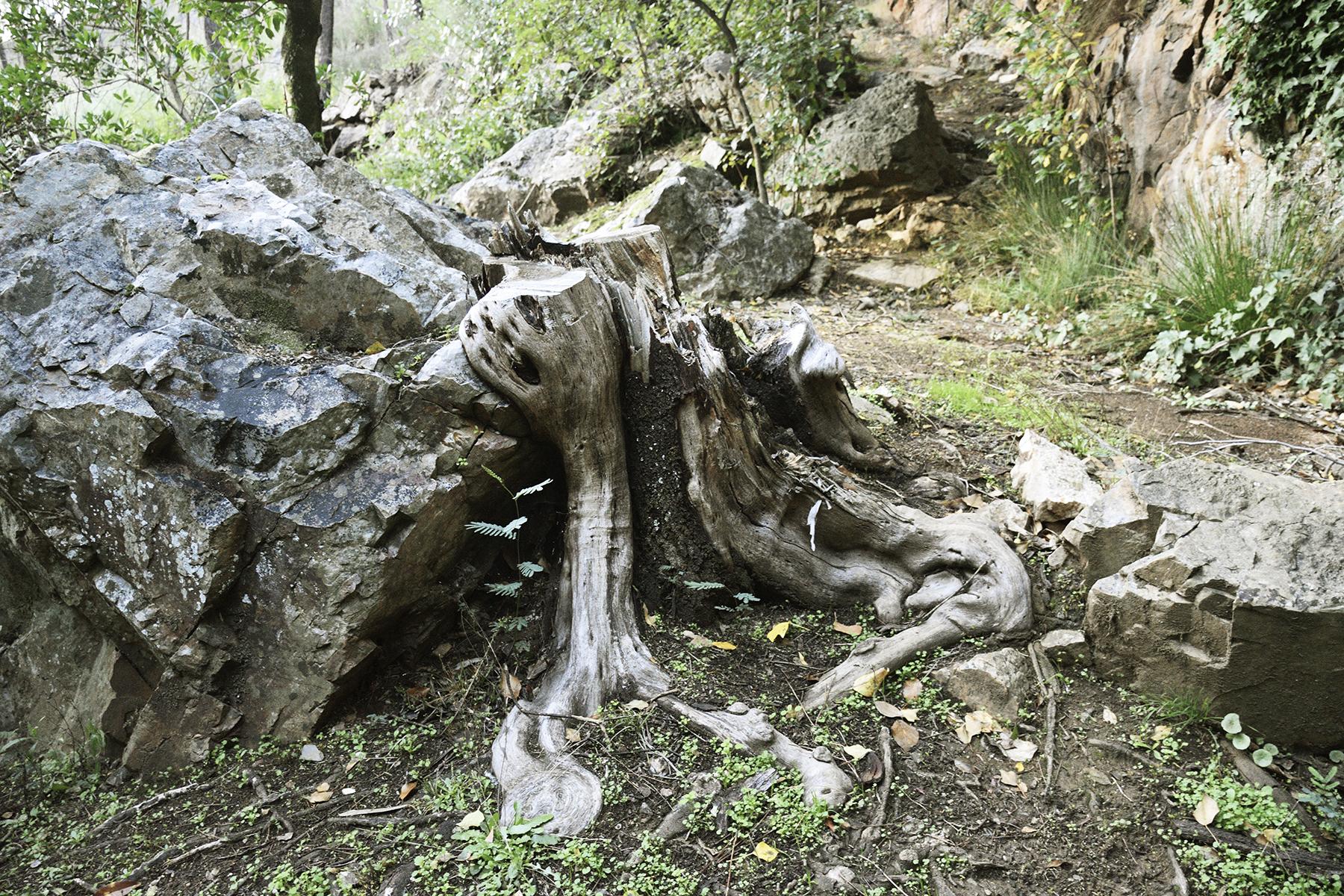 Ribeira de Oleiros - Oleiros